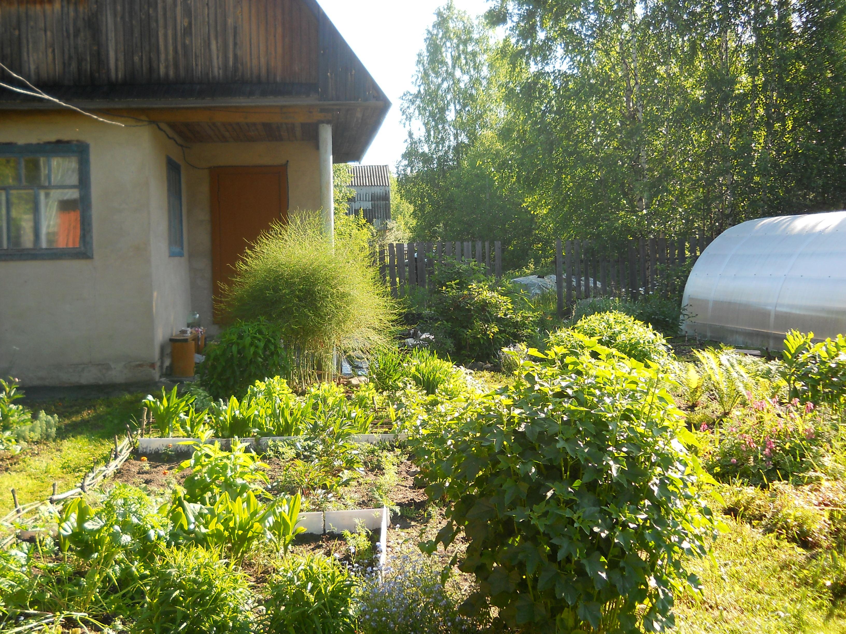 Авито сады и дачи киров